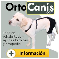 ortocanis, la ortopedia para perros