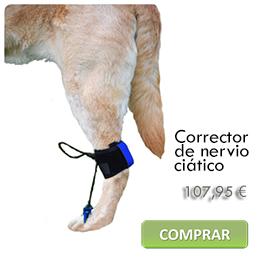 Corrector de nervio ciático