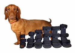 Pack Férulas ortopédicas para miembro anterior