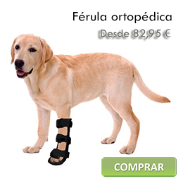Orthopedic splint for dogs