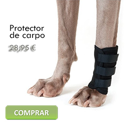 Buy a carpal brace